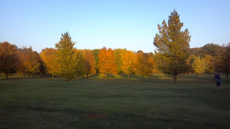 Fall_foilage_2012